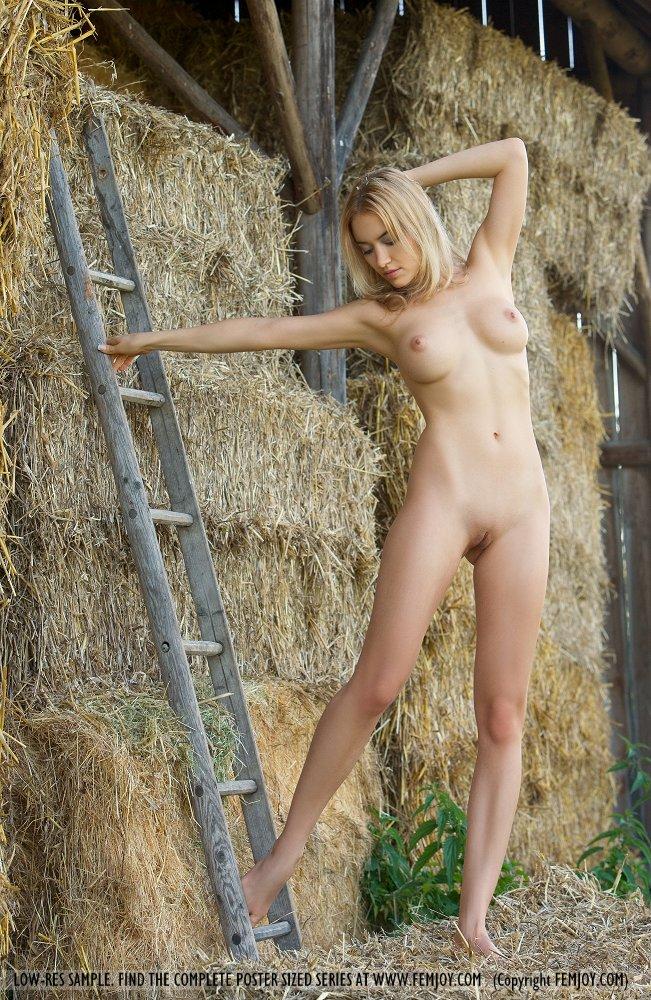 Сучка на сене фото 93-773
