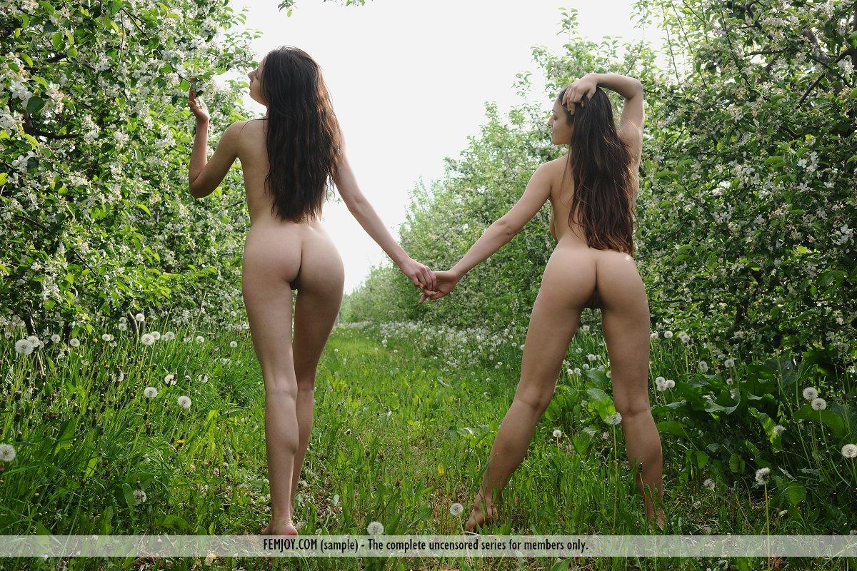Foto Galerias Porn Gratis 109